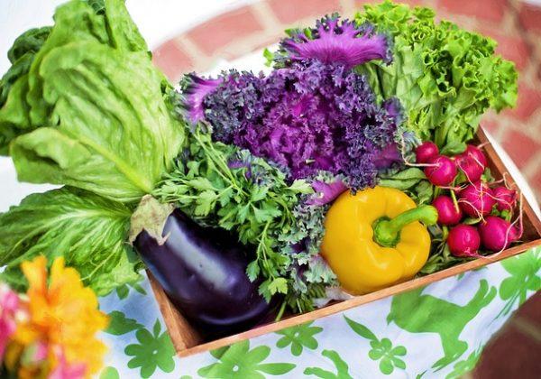 מזון נקי או אכילה נקייה מהי? – Clean food